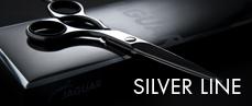 Silver Line Jaguar